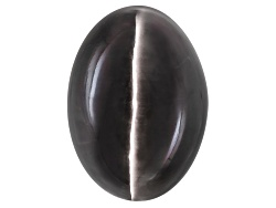 XTP805<br>Orissa Cats-eye Sillimanite 7.56ct 11.62x8.36mm Oval Cabochon Comes With Gemworld Report