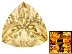ZNT025<br>Tanzanian Yellow Zircon Avg 3.25ct 9mm Trillion Color Vary Caution:heat Sensitive